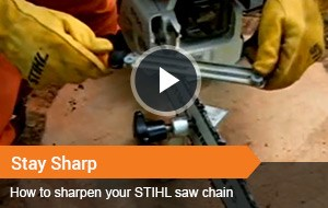 Watch Video - Stay Sharp